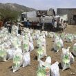 KSRelief calls for UN probe into 'serious reports' of Yemen aid agency corruption
