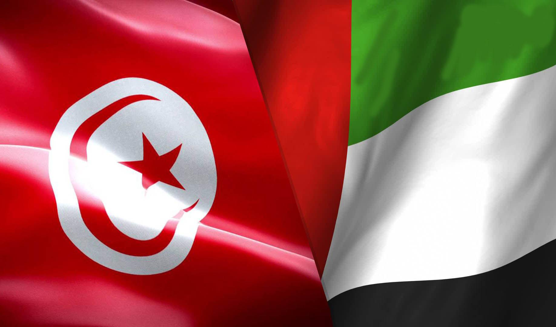 الإمارات تنفي تخطيطها لانقلاب في تونس