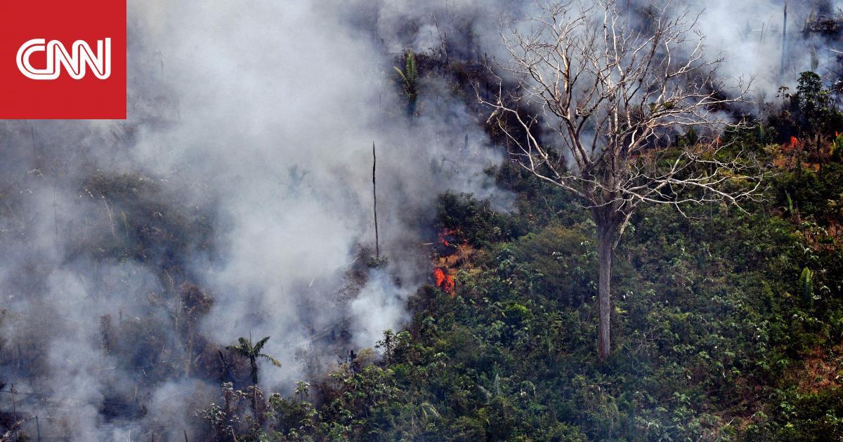 البرازيل تستعين بالجيش لمكافحة حرائق الأمازون.. وترامب يعرض المساعدة