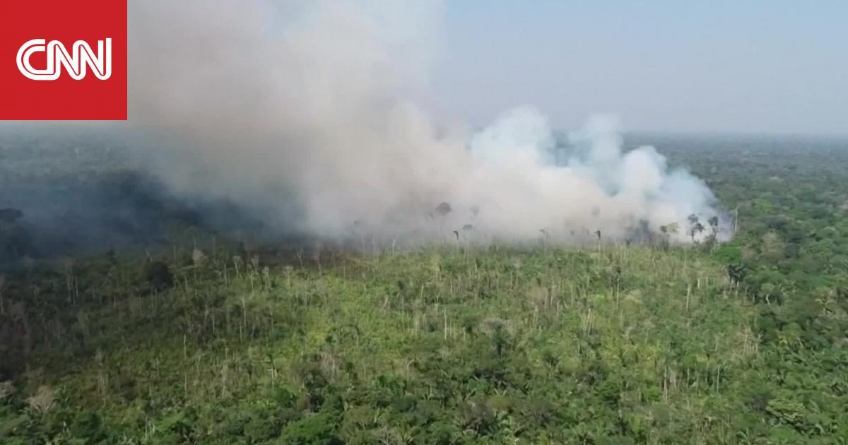 الأمازون تحترق.. لماذا يجب أن تهتم وكيف سيؤثر ذلك على حياتك؟
