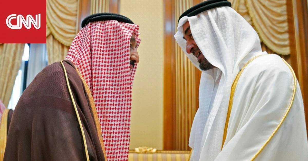 """أكاديمي إماراتي: شراكتنا مع السعودية صلبة كـ""""الصخر"""""""