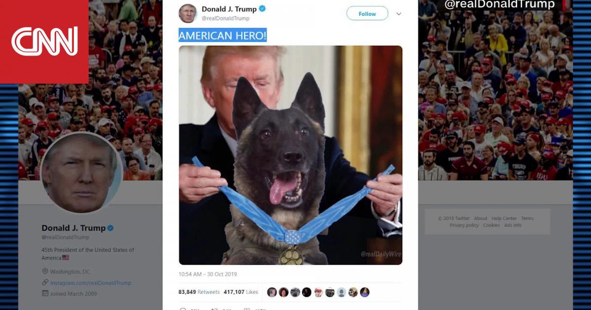 ترامب يدعو كلبا شارك بعملية قتل البغدادي للبيت الأبيض